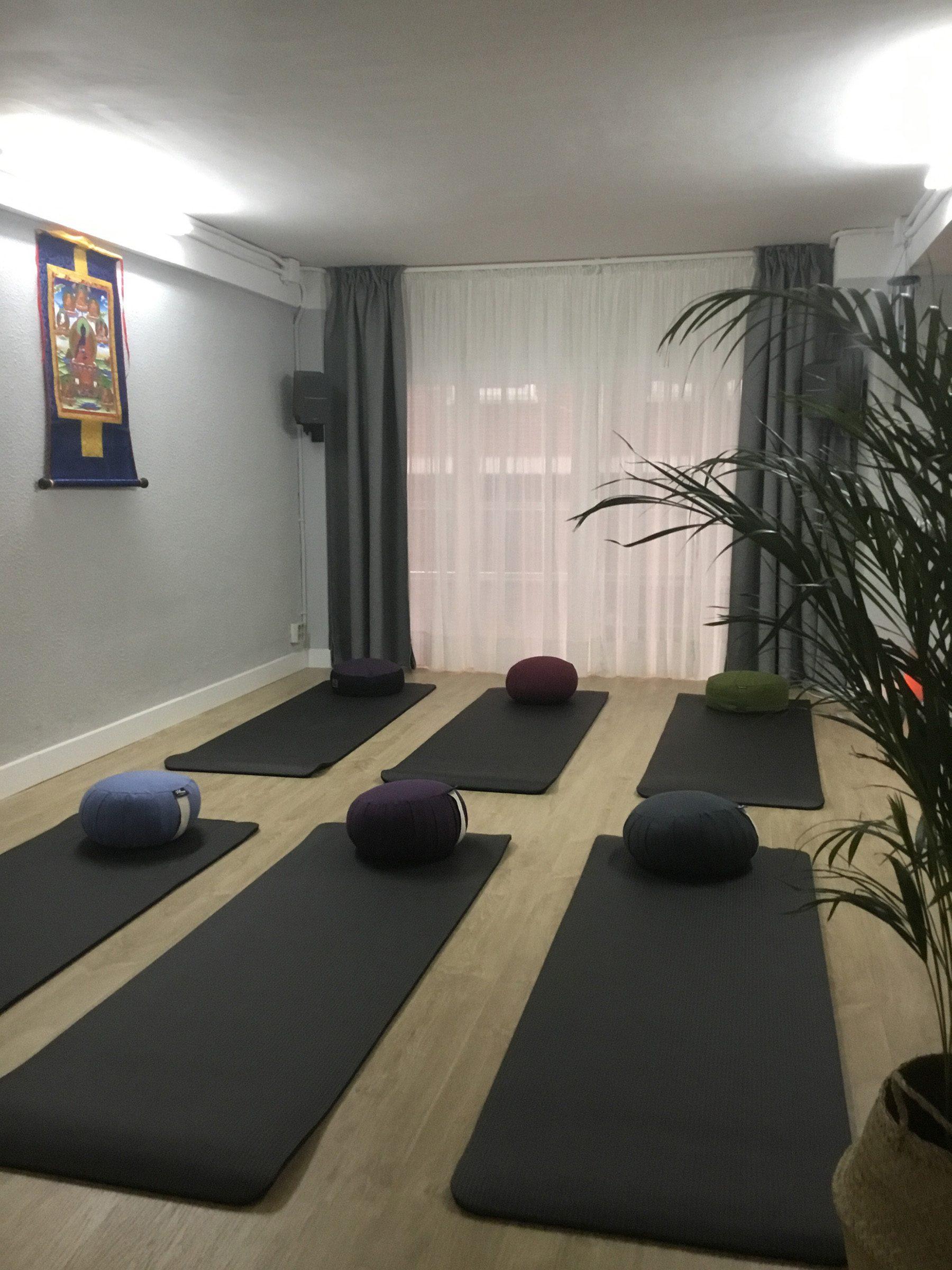jonvicario clases de meditacion